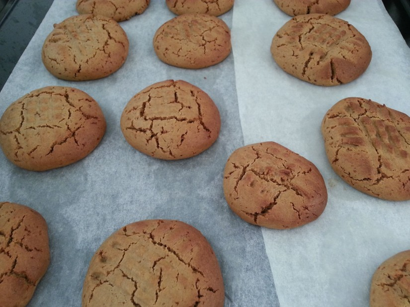ginger buckwheat cookies finished